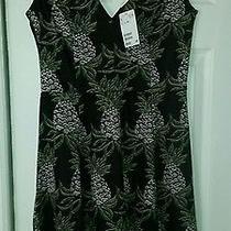 h&m - Sleeveless Dress Size Medium Nwt Photo