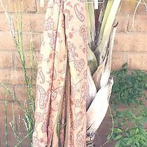 h&m Style European Paisley Print Scarf Reversible Photo