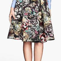 h&m Trend Floral Knee Scuba Swing Pleats Full Skirt Uk 8/ Us 4/ Eur 34 Bnwt Photo