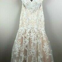 Hadley Bloom Champagne and Ivory Lace Trumpet Sample Wedding Dress (Size 16) Photo