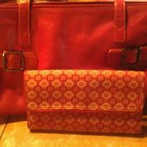 Handbag and Wallet Photo