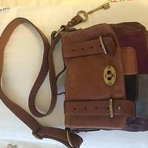 Handbag Fossil Photo