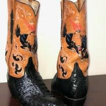 Handpainted Lucchese Leather Boots Western/ Cowboy Boots  Size 9.5 Photo