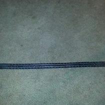 Harley Davidson Leather Belt Photo