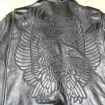 Harley Davidson       Rare...rare...leather Jacket --- Size Large Photo