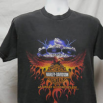 Harley Davidson T Shirt Lg Naples Fl Florida Ride Bike Motorcycle Tee Photo