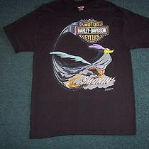 Harley Davidson Tshirt Size Large Photo