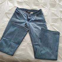 Harley Davidson Women's Blue Jeans Photo