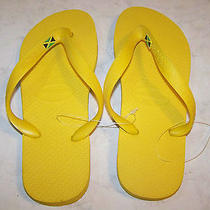 Havaianas Women's Sandals Flip Flops Slippers Photo