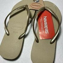 Havaianas Womens Grey/light Golden Thong Flats Flip-Flops Sandals 9/10w Nwt Photo