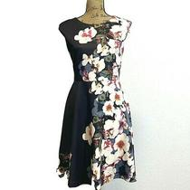 Heidi Weisel Mixt Dress 6 Black Blush Pink Gray Floral Fit Flare Stretch Party S Photo
