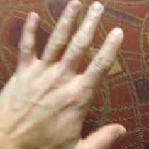 Hermes Gloves Photo