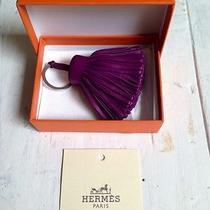 Hermes Paris Carmen Key Ring in Violet Photo