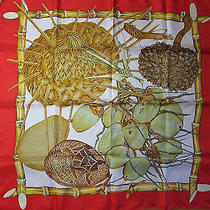 Hermes Scarf  Jardin Creole (New-Tags) 100% Silk 90cm Carre Photo