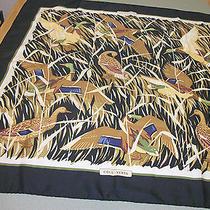 Hermes Silk Scarf  Birds  (Oiseau) With Black Border  Photo