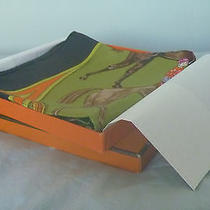 Hermes Silk Scarf New Rare Photo