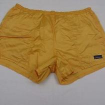 Highly Used Elastic Shot Patagonia Womens Baggies Lite Swim Trunks Shorts Sz L Photo