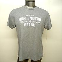 Hollister Co Huntinton Beach Original Classic Men's Short Sleeve T-Shirt Gray M Photo