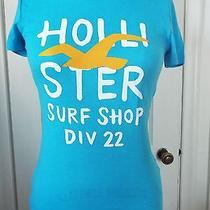 Hollister Hco Bird Logo Short Slv Scoop Nk T-Shirt Turq Blue/orange Bird Sm Nwt Photo