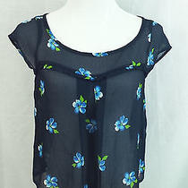 Hollister Short Sleeve Blouse Dress Top Size Small S Blue White Sheer Floral Hco Photo