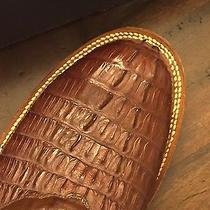 Hornback Boots Photo