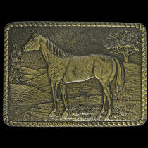 Horse Rodeo Back Riding Cowgirl Cowboy Western Gift 70s Vintage Belt Buckle Photo