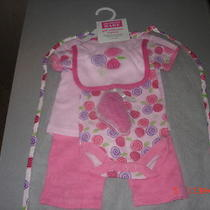 Hudson Baby  Girls Size 0-3m  Gift Set 5 Pieces Plus Garment Bag  Nwt Photo