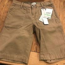 Hudson Boys Khaki Shorts Size 8 New Light Brown Photo
