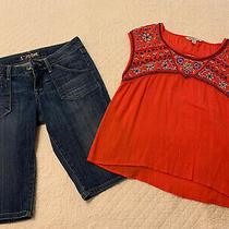 Hudson Jean Shorts  Size 29 American Eagle Top Photo