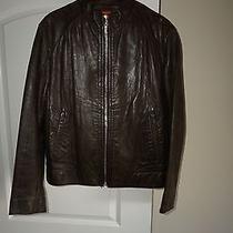 Hugo Boss Motorcycle Jacket   (Dark Brown) Photo