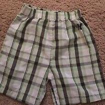 Hurley Baby Shorts 12-18 Months Photo