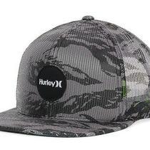 Hurley Gray Flammo Snapback Cap Hat 30 Photo