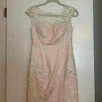 Illusion Neckline White and Blush Lace Dress Size 2  Photo
