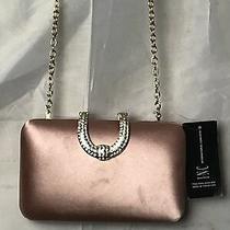 Inc International Concepts Blush Pink Party Danyele Satin Clutch Bag Photo