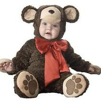 Incharacter Lil' Teddy Bear Costume 0-6m Free Express Shipping  Photo