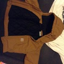 Infant 6 Month Tan Carhartt Jacket  Photo