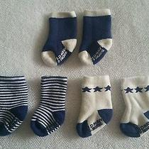 Infant Boy Old Navy 3 Pairs of Cream/navy Blue Socks Size 0-3 Months Photo