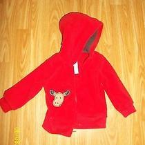 Infant Boys Jacket 6 Months  Photo
