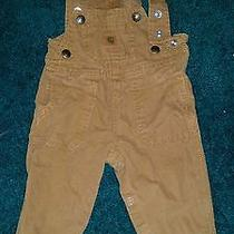 Infant Carhartt Overalls Photo