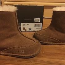 Infant Chestnut Uggs  Photo