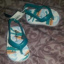 Infant Flip Flops  Photo