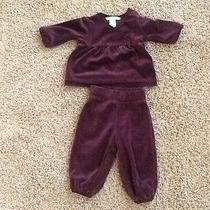 Infant h&m Velour Outfit Photo