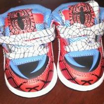 Infant Shoe Photo