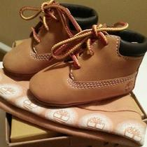 Infant Timberland Booties Photo