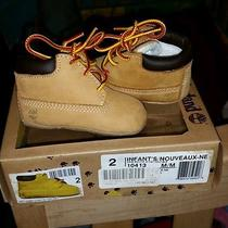 Infant Timberlands Size 2 Photo