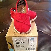 Infant Toms Red Canvas 2 Photo