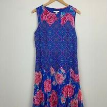 Isaac Mizrahi Live Blue Pink Floral Print Sleeveless Shift Dress Size 10 M Photo