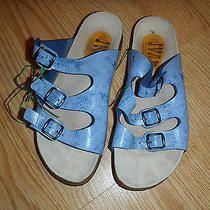 Ivan Made in Spain (Birkenstock Papillio Style Name Florida) Size 11 Photo