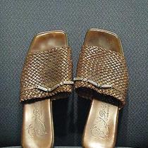 J Brighton Brown Sandals Photo