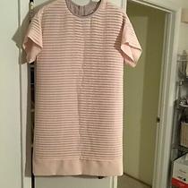 J. Crew Blush Shutter Pleat Chiffon Shift Dress Sz 6 (Small) B9434 Perfect Photo